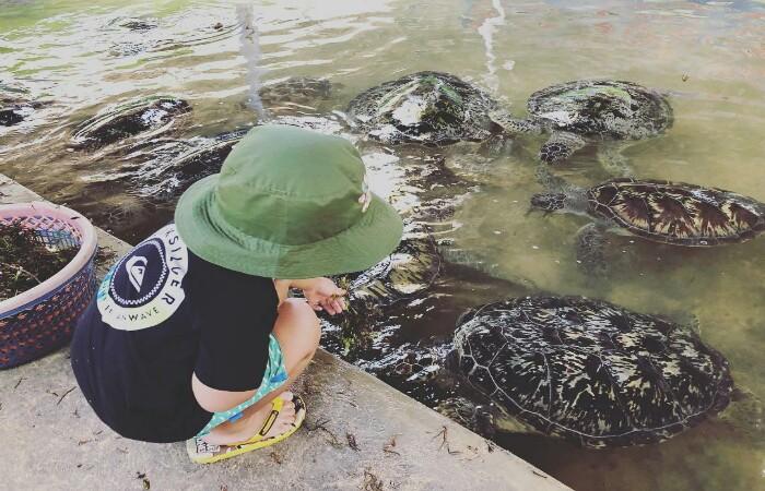 Wisata edukasi Tanjung Benoa Bali