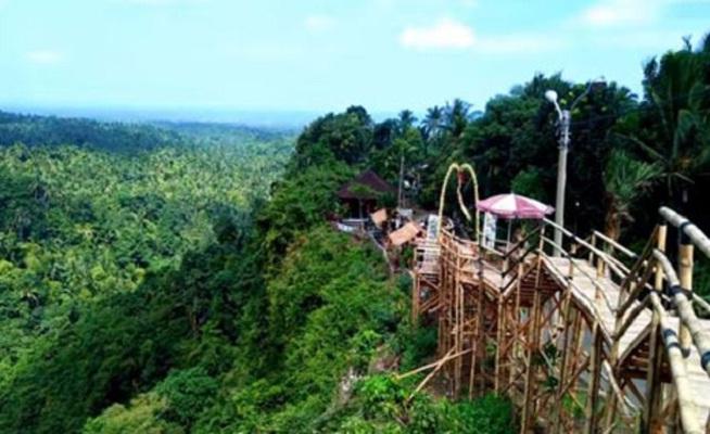 Jembrana Green Cliff Sensasi Wisata Berbeda Di Pulau Bali